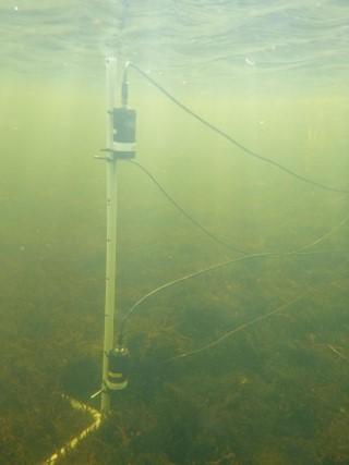 Aquaculture CO2 Sensor
