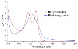 Absorbance Spectra of Blood Hemoglobin
