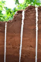 Soil Moisture Measurements