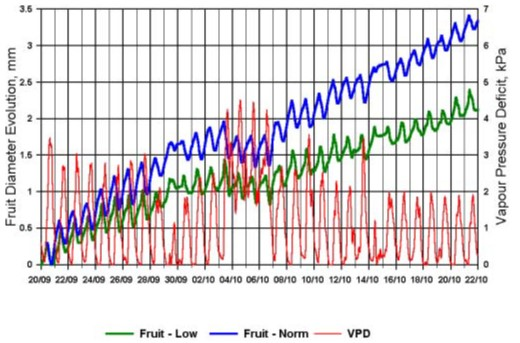 avocado dendrometer data