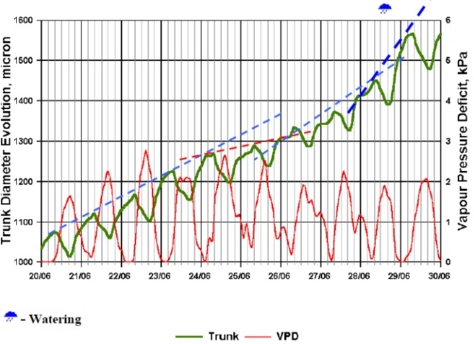 Vineyard Weekly Growth Dendrometer Data