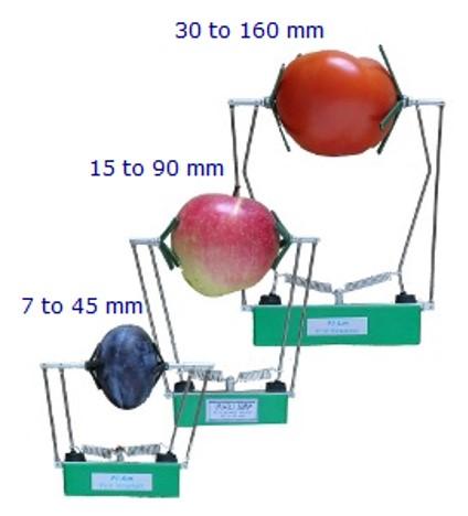LVDT Fruit Dendrometer
