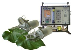 Photosynthesis Meter