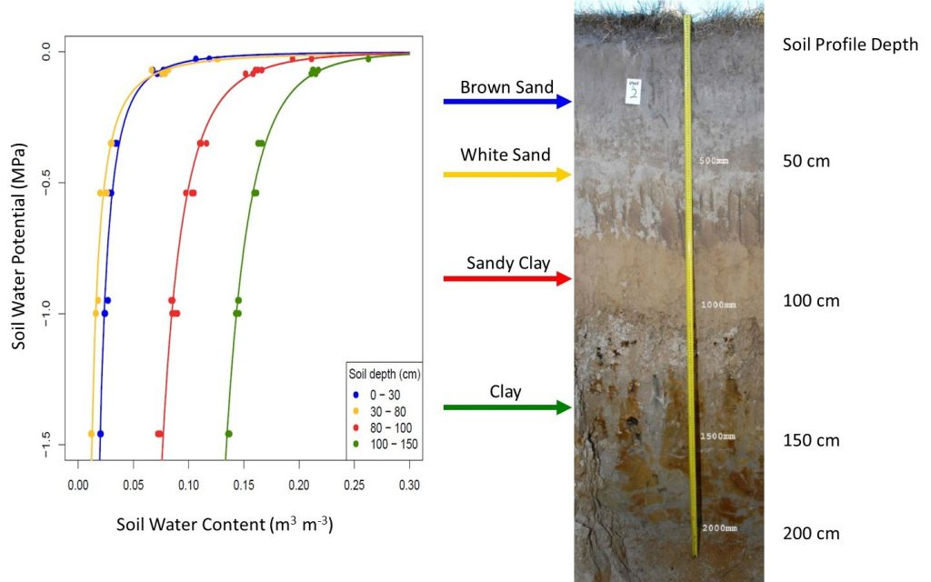 Soil Water Characteristic Curve