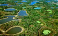 pantanal-wetland