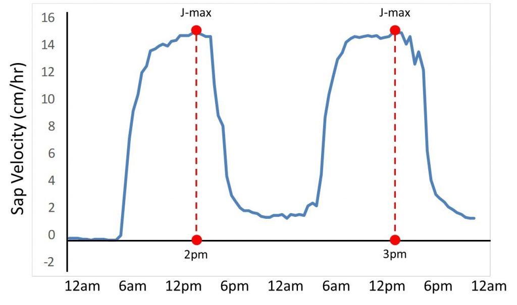 J-max Data Analysis