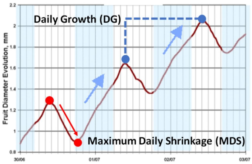 Maximum Daily Shrinkage MDS