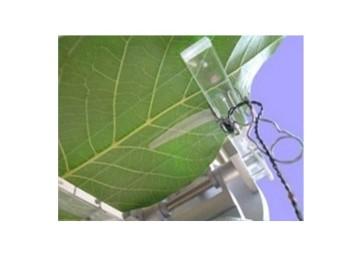 Photosynthesis Meter Edaphic Scientific