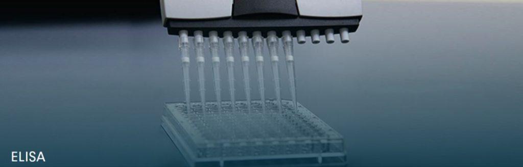 ELISA GMO Testing Kit